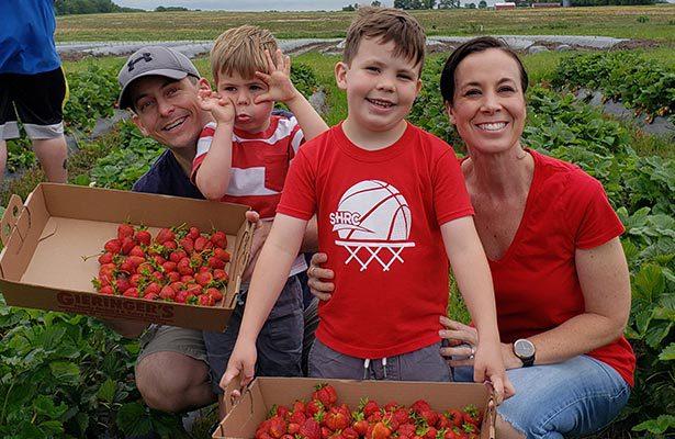 Dr Martin Family Strawberry Picking